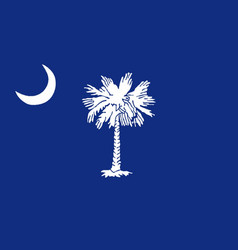 South carolina state flag vector