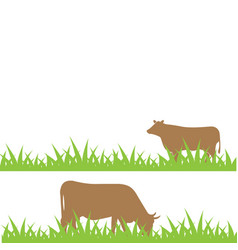 cow on the field vector image