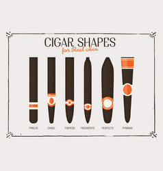 Different cigar shapes vector