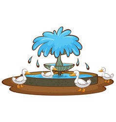 ducks and fountain on white background vector image