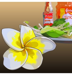 Frangipani flower on a background of food vector