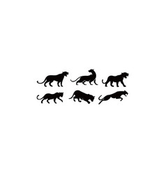 Leopardspuma panther and tiger action silhouett vector