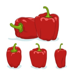 Red bell peppersweet pepper or capsicum vector image