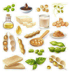 soy food products set vector image