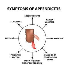 Symptoms appendicitis inflammation appendix vector