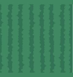 Waterlemon texture full frame vector