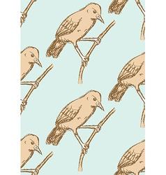 Sketch rufous hornero bird in vintage style vector image vector image