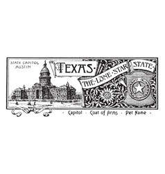 The state banner for texas the lone star state vector