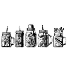 Cocktails in mason jar and shaker vector