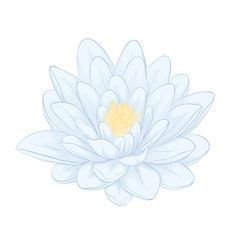 lotus flower painted in graphic style isolated vector image