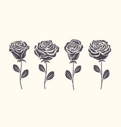 rose with leaves icon set decorative flower vector image