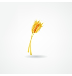 spica icon vector image