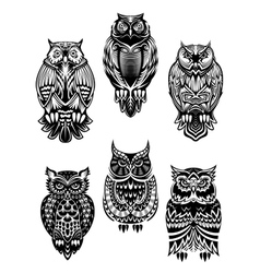 Tribal owl birds set vector image vector image