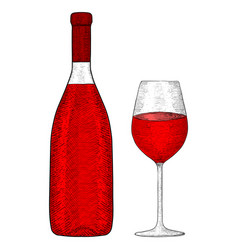 bottle of red wine with glass hand drawn sketch vector image