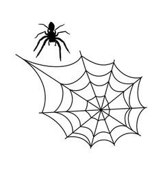 Halloween spider web vector