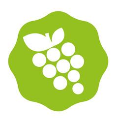sticker delicious grape fruits icon vector image vector image