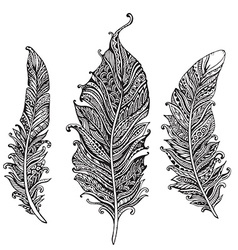 Hand drawn stylized feathers black and white vector