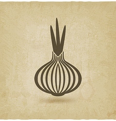 onion old background vector image vector image