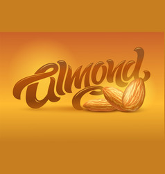 almond lettering with realistic of vector image