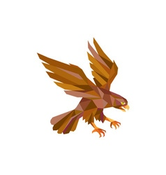 Peregrine Falcon Swooping Low Polygon vector image