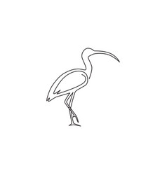 single continuous line drawing elegant ibis vector image