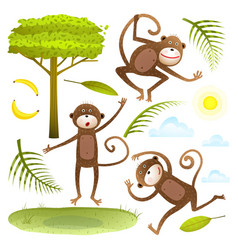 funny monkeys friends with tree leaves sun clouds vector image vector image