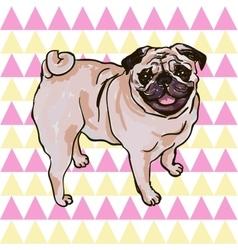Puppy Pug vector image vector image
