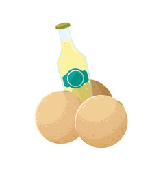 juice bottle fresh fruit melon vector image
