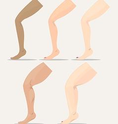 Leg vector