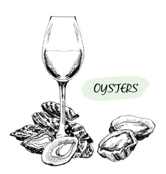 Oysters and wine glass vector