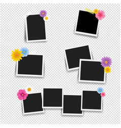 photo frame with flowers big set with transparent vector image