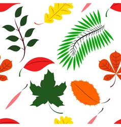 Seamless of Colored different leaves vector image