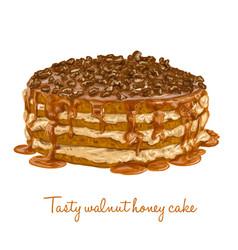 tasty walnut honey cake vector image vector image