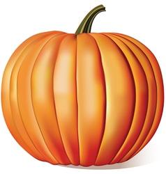 Ripe Pumpkin vector image vector image