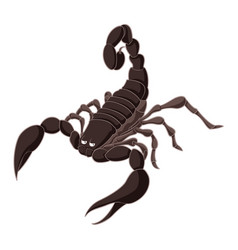 cartoon brown scorpion vector image