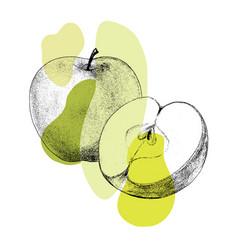 Fresh apple hand drawn sketch vector