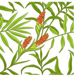 ginger pattern vector image