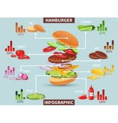 Hamburger ingredients infographic vector image