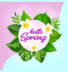 hello spring greeting card with realistic tropical vector image