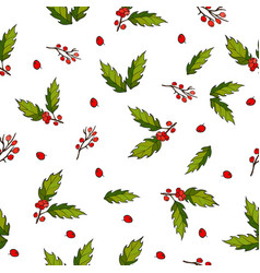 Seamless christmas pattern with holly berry vector