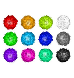 set colorful pom poms vector image