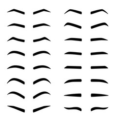 set of designes of eyebrows vector image