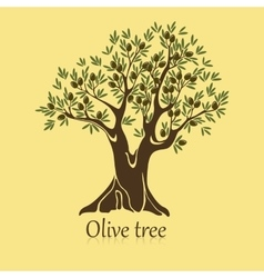Ripe berries on branches of olive tree banner vector image vector image