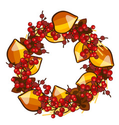 a decorative wreath of dried fruit of physalis and vector image