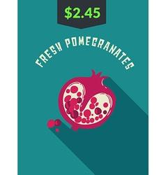 Fresh Pomegranates vector