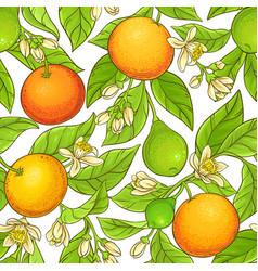 grapefruit branch pattern vector image