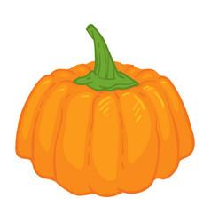 Pumpkin ripe vegetable symbol autumn vector
