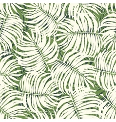 Seamless Tropical Floral Pattern Background vector image
