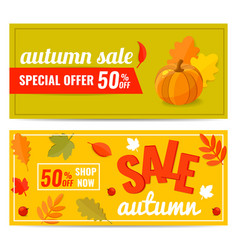 set of autumn sale discount banner with pumpkin vector image