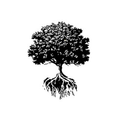 Trees and roots silhouette vector